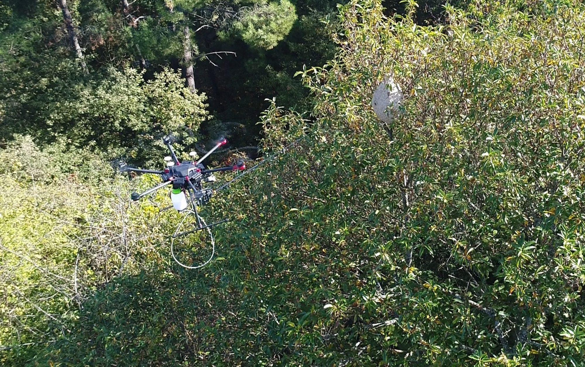 Drone Velutina